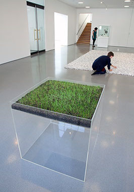Hans Haacke, Grass Cube, 1967, acrylic plastic, earth, fescue grass, water. Photo: Jerry Hardman-Jones, Courtesy of the Henry Moore Institute
